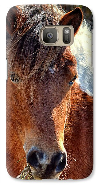 Galaxy S7 Case featuring the photograph Assateague Pinto Mare Ms Macky by Bill Swartwout Fine Art Photography