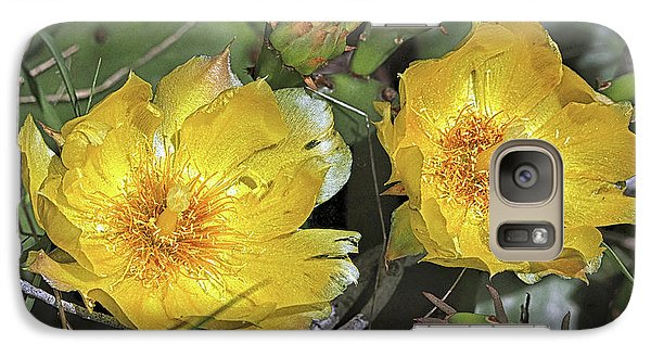 Galaxy S7 Case featuring the photograph Eastern Prickley Pear Cactus Flower On Assateague Island by Bill Swartwout Fine Art Photography