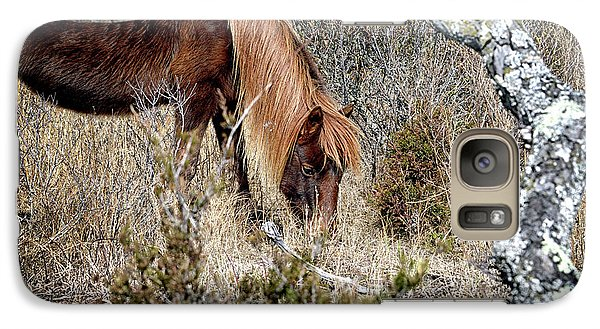 Galaxy S7 Case featuring the photograph Lunchtime For Assateague's Gokey Go Go Bones by Bill Swartwout Fine Art Photography