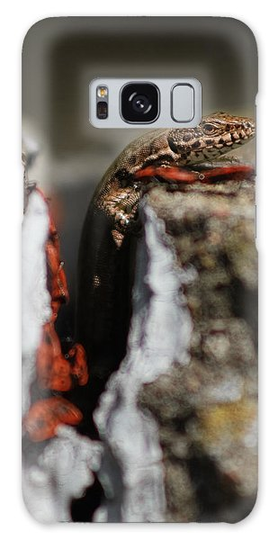 Galaxy Case featuring the photograph  A Lizard Emerging From Its Hole by Stwayne Keubrick