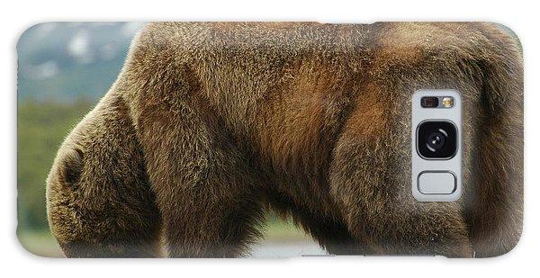 Alaska Grizzly Galaxy Case