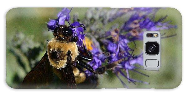 Bee Bombus On Spirea Galaxy Case