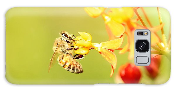 Bee On Milkweed Galaxy Case by Greg Allore