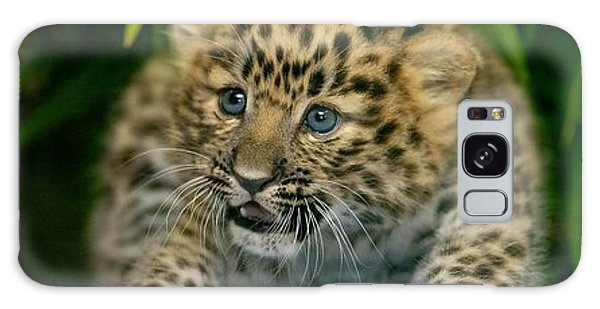 Cheetah Cub Im Gonna Getcha Galaxy Case