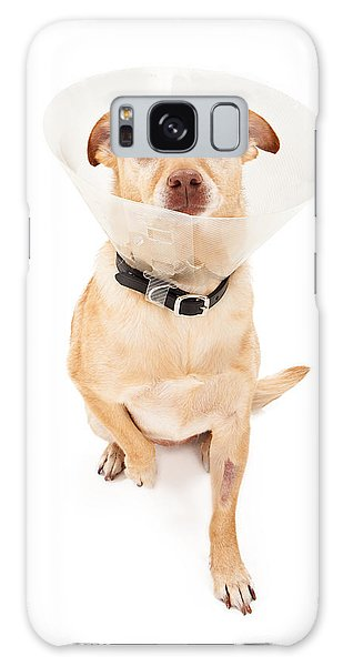 Chihuahua Mix Dog With Cone  Galaxy Case