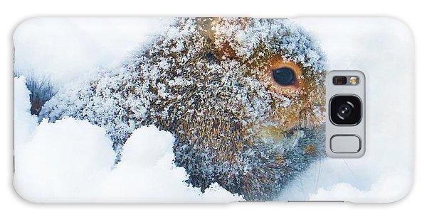 Deep Snow Squirrel Galaxy Case