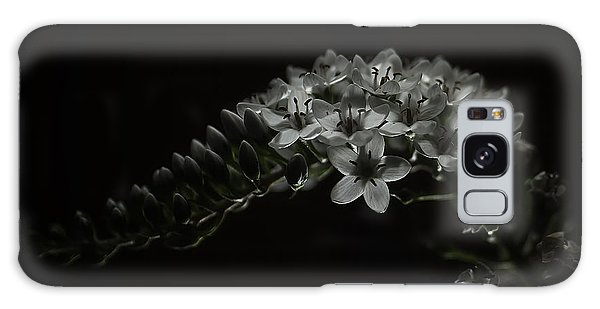 Gooseneck Loosestrife Galaxy Case