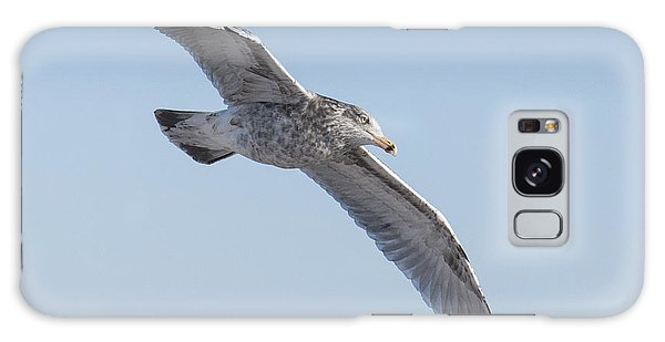 Gull Friend Galaxy Case