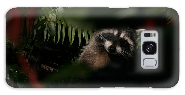 I Can See You  Mr. Raccoon Galaxy Case by Kym Backland
