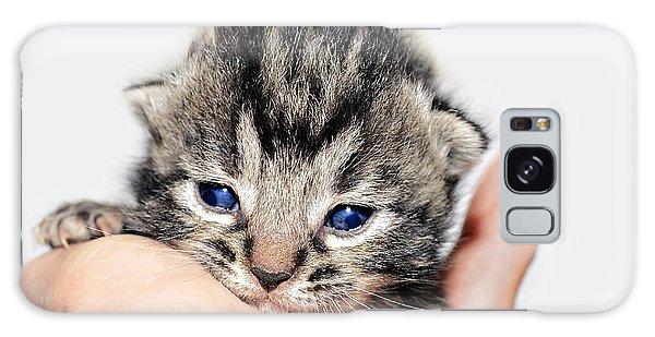 Kitten In A Hand Galaxy Case