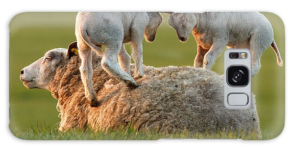 Leap Sheeping Lambs Galaxy Case by Roeselien Raimond