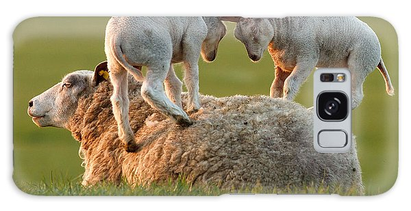 Sheep Galaxy S8 Case -  Leap Sheeping Lambs by Roeselien Raimond