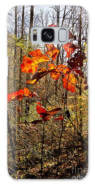 Leaves Of Fall Galaxy Case