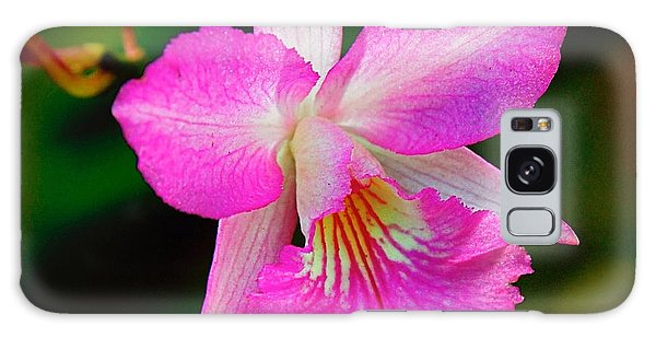 Orchid Flower Galaxy Case