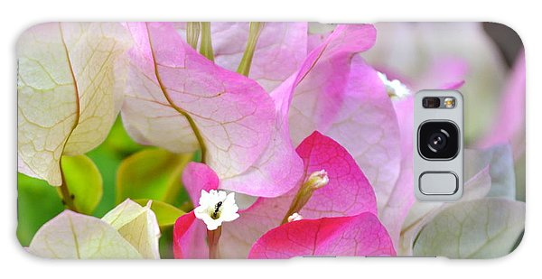 Pink  Bougainvillea ...with A Friend Galaxy Case