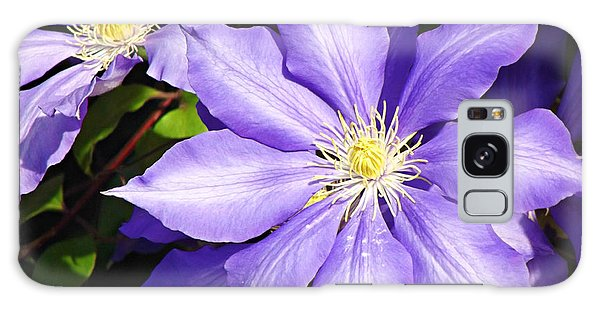 Pretty Purple Clematis Galaxy Case by Mindy Bench