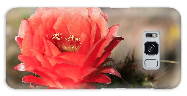 Red  Cacti Flower Galaxy Case