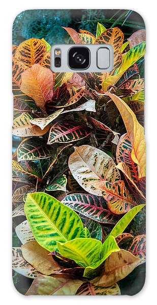 Variegated Plants Galaxy Case