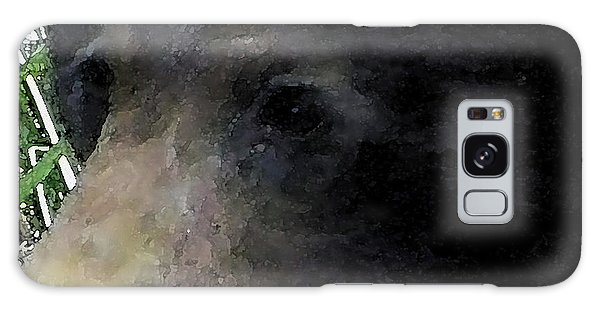01042014 Black Bear Alaska Galaxy Case