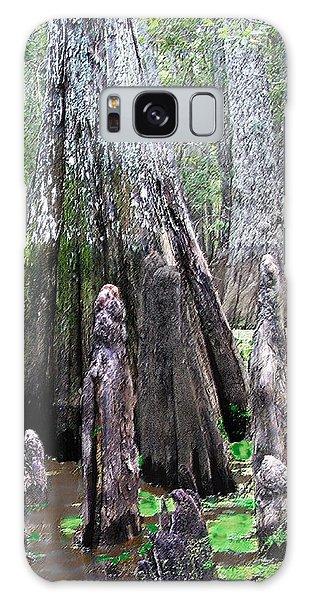 02102015 Honey Island Swamp Galaxy Case