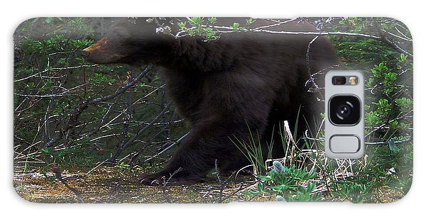 03162015 Black Bear Alaska Galaxy Case