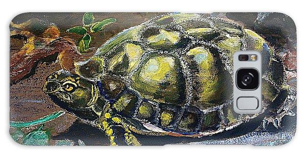 05042004 Box Turtle Galaxy Case