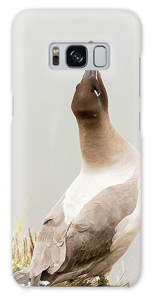 Albatross Galaxy Case - A Light Mantled Albatross by Ashley Cooper