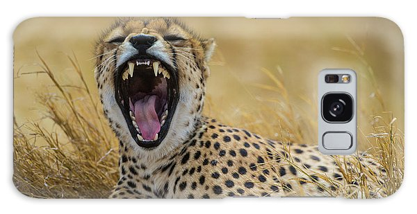 Africa Tanzania Cheetah (acinonyx Galaxy S8 Case