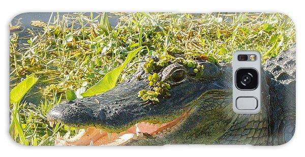 American Alligator Galaxy Case