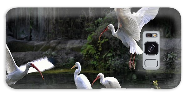 American White Ibis Galaxy Case
