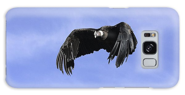 Andean Condor Galaxy Case