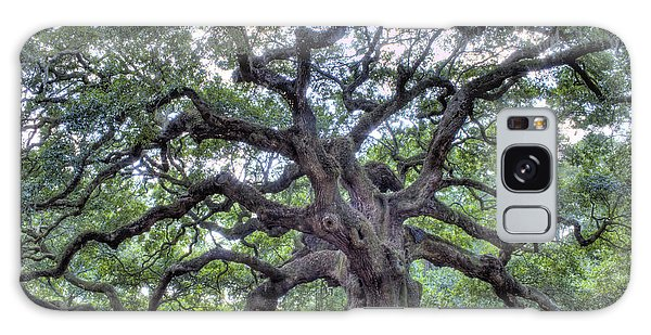 Tree Galaxy Case - Angel Oak by Dustin K Ryan