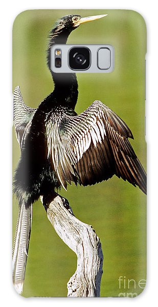 Anhinga Anhinga Anhinga Drying Plumage Galaxy Case by Millard H. Sharp