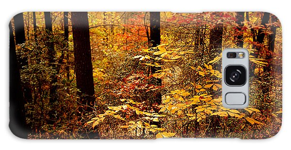 Appalachian Fall Galaxy Case
