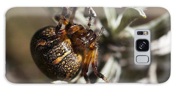 Arachnophobia Galaxy Case