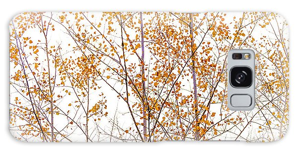 Autumn Birch Galaxy Case