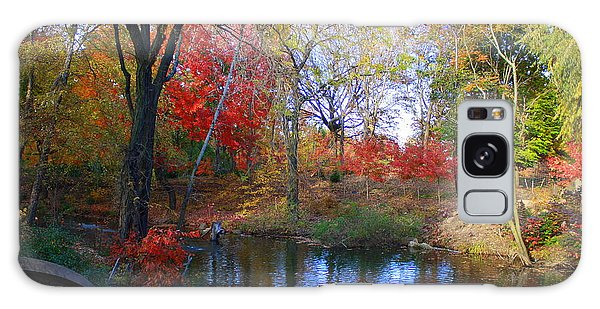 Autumn By The Creek Galaxy Case