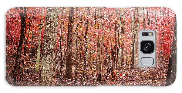 Autumn Landscape Galaxy Case