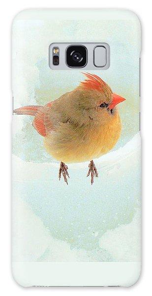 Baby Female Cardinal Galaxy Case