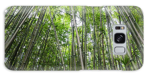 Bamboo Forest In Maui Hawaii Galaxy Case