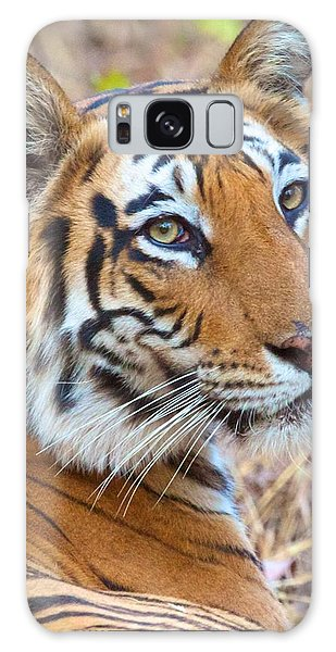 Bandhavgarh Tigeress Galaxy Case