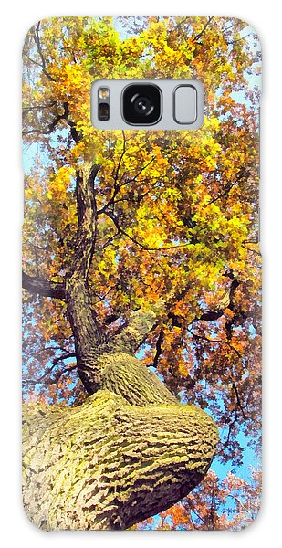 Beautiful Autumn Landscape Galaxy Case by Odon Czintos