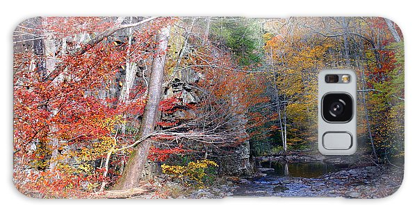 Beaverdam Creek Galaxy Case by Annlynn Ward