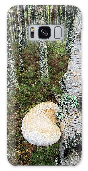 Cairngorms National Park Galaxy Case - Birch Polypore Fungus by Duncan Shaw/science Photo Library