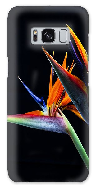 Birds Galaxy Case by James Roemmling