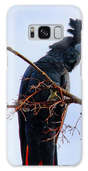Galaxy Case featuring the photograph Black Cockatoo by Debbie Cundy
