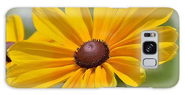 Galaxy Case - Blackeyed Susan Flower by A Gurmankin