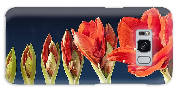 Blossoming Amaryllis Flower Galaxy Case by Tilen Hrovatic