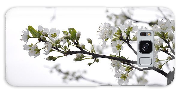 Blossoms Galaxy Case by Kristen R Kennedy