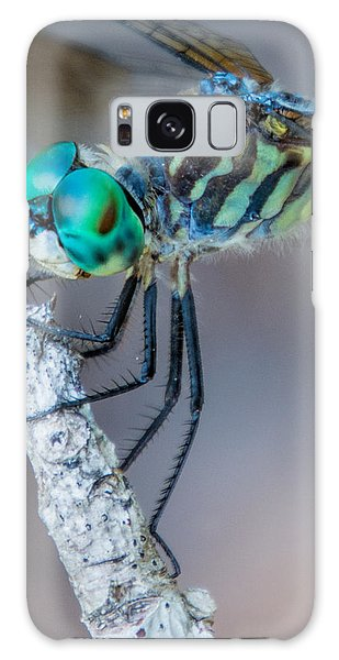 Galaxy Case featuring the photograph Blue Dasher Dragonfly by Jeanne May